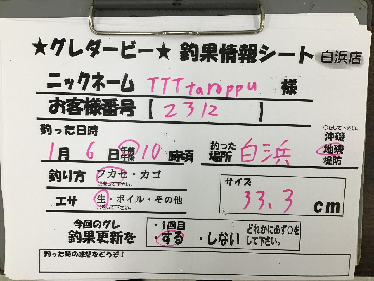 1/6 TTTtaroppu様 第2回グレダービー2020釣果(白浜)33.3cm
