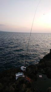 厳しかった樫野内海釣行。