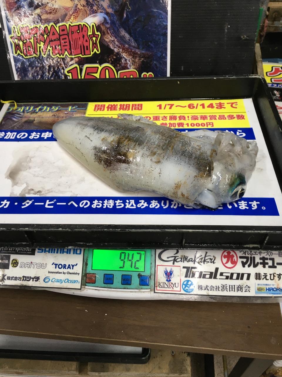 2/24 INV 様よりの釣果情報
