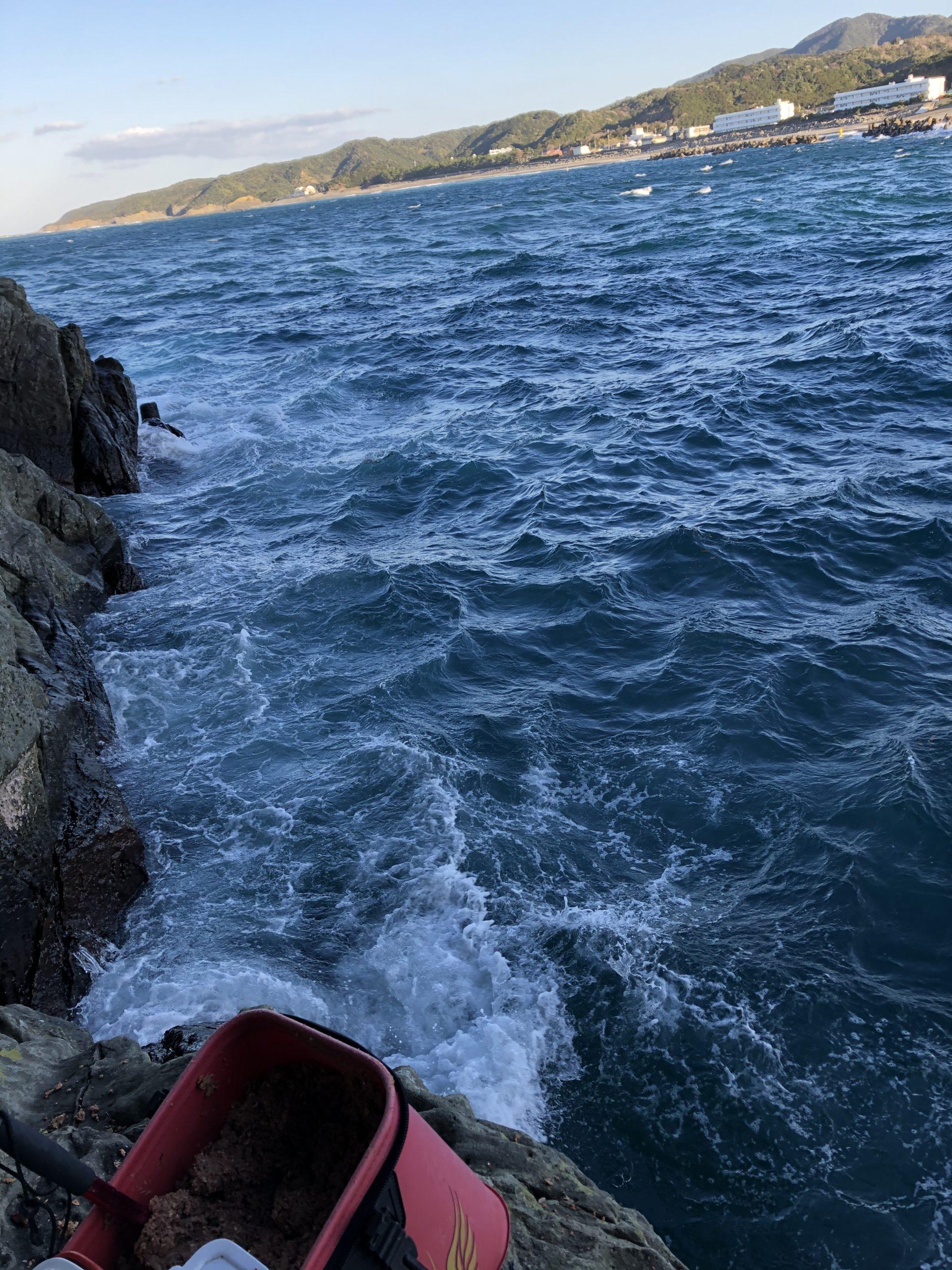 日置湾内釣行