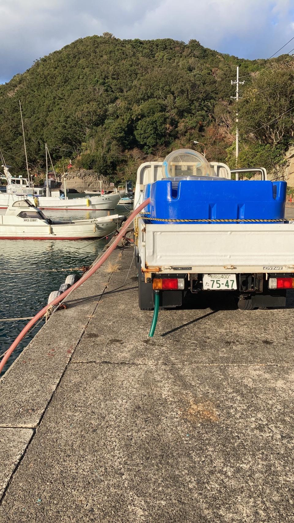 白浜店近くの袋漁港へ海水を汲みに行くだけで、潮状況はだいたい分かります!