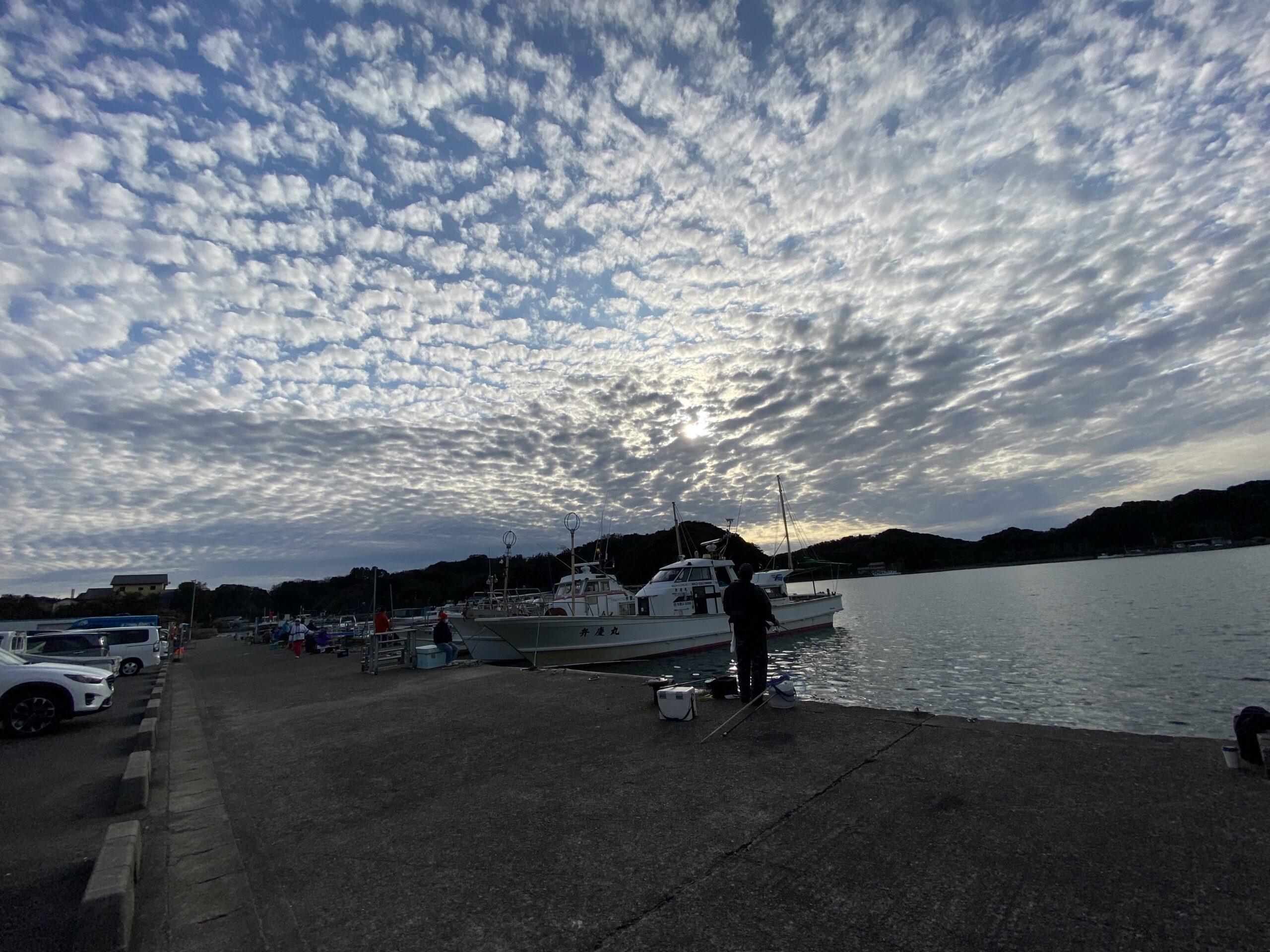 和歌山県田辺市新庄町のマルチョウ裏でアジ釣れているようです
