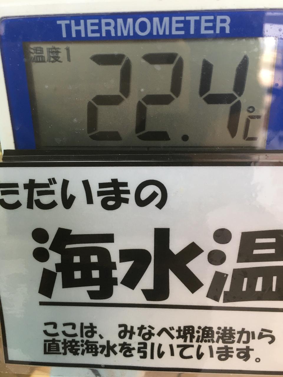 6/8みなべ水温22度を超えました。