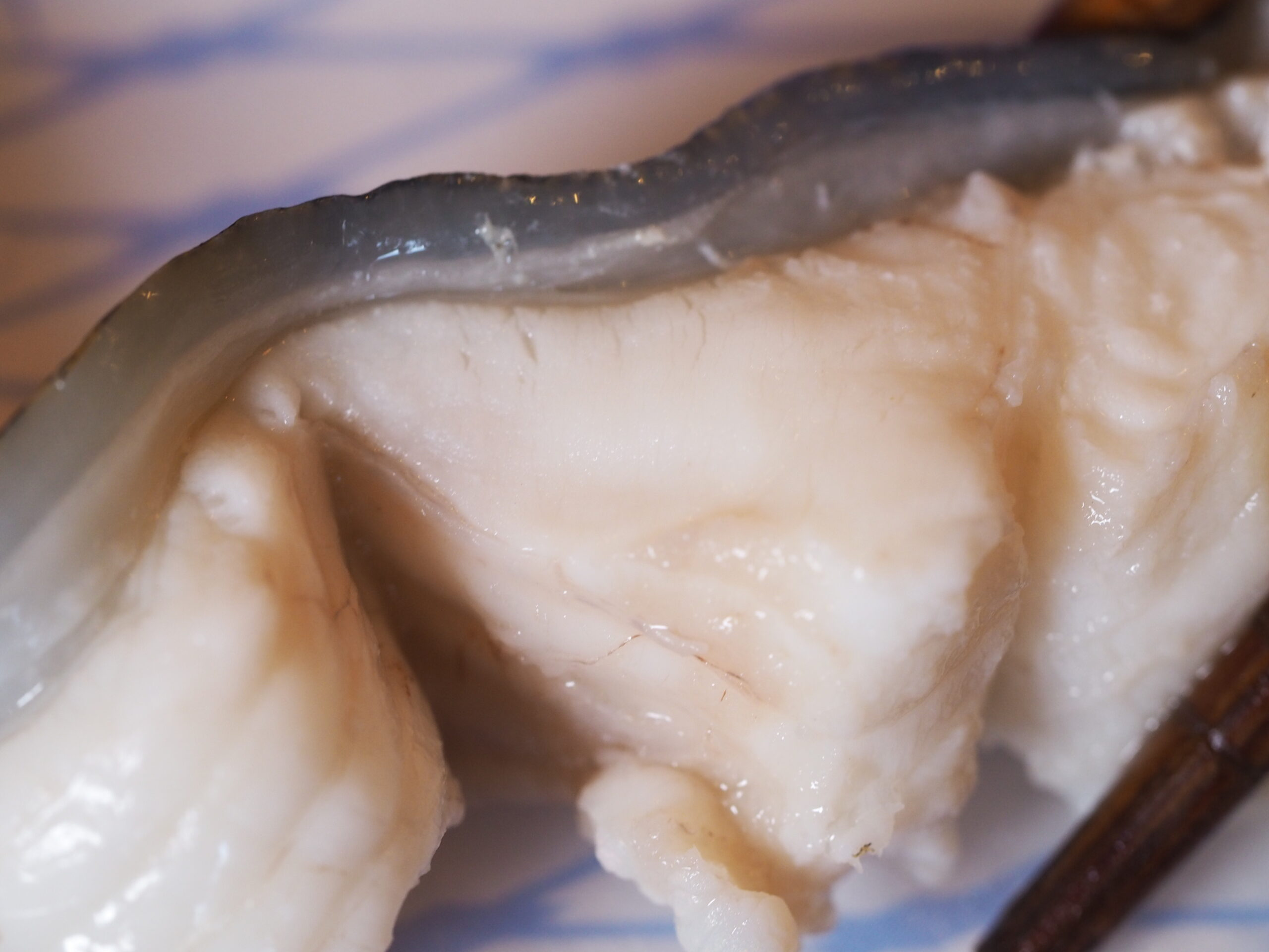 ウツボを食べて精力絶倫になりませんか? 昔から精が付くと言われてきた魚ですが、これを食べれば元気はつらつ、夏バテも吹っ飛びます。